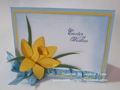 Blossoms Daffodil