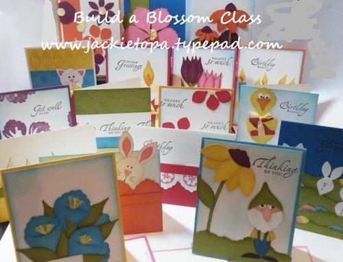 Build a Blossom Class