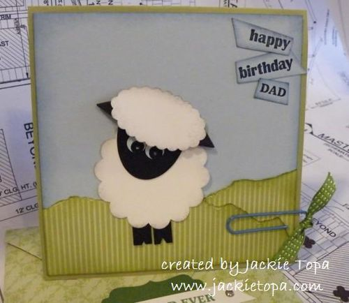 Birthday Sheep