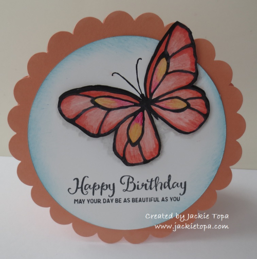 Scalloped Butterfly